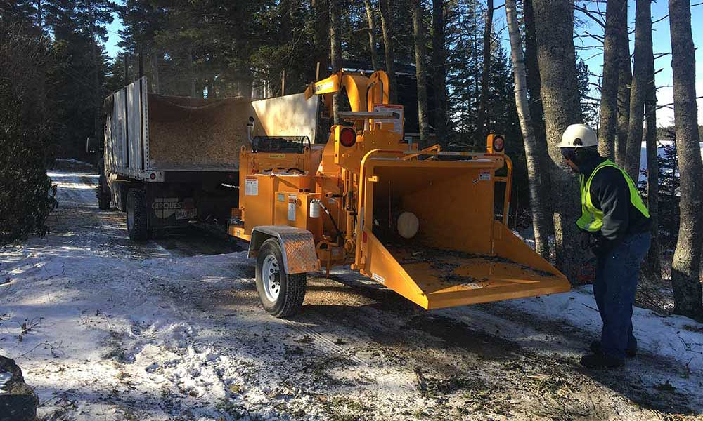 Highly Specialized Removal Equipment for Tree Removal